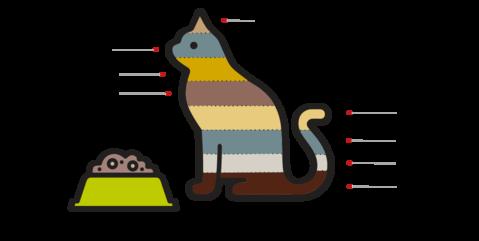 Pet food - Symrise