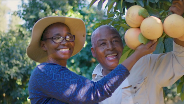 Symrise - Discover KwaZulu-Natal, discover our world of Grapefruit